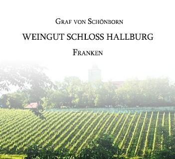 Graf von Schönborn (Franken)