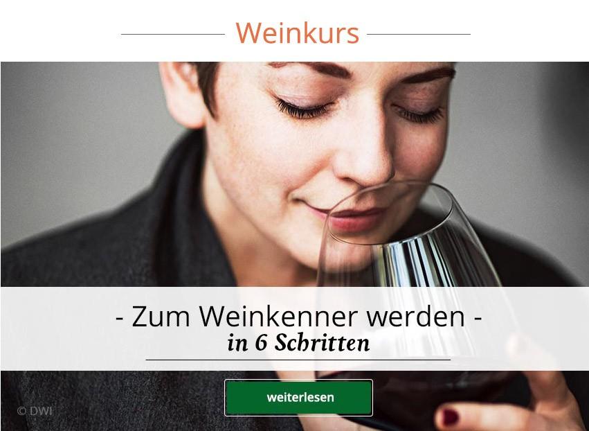 Zum kostenlosen Online-Weinkurs