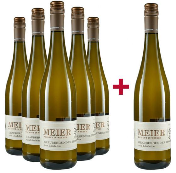 5+1 Paket Grauburgunder vom Lösslehm - Weingut Meier