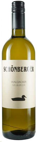 2017 Waldacker Neuburger trocken Bio - Weingut Schönberger