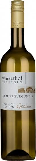2020 Grauer Burgunder Spätlese trocken - Winzerhof Ebringen