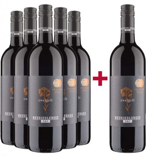 5+1 Zweigelt Neusiedlersee DAC Paket - PreinerWein
