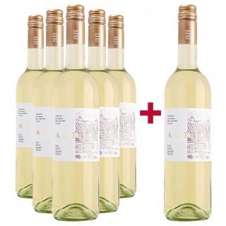 5+1 Paket 2019 Cabernet Sauvignon Blanc de Noir trocken - Winzergenossenschaft Albig