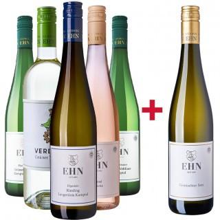 5+1 trockene Weine Entdeckerpaket - Weingut Ludwig Ehn