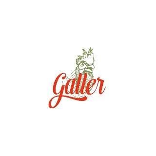2018 Riesling trocken 1 L BIO - Weingut Galler