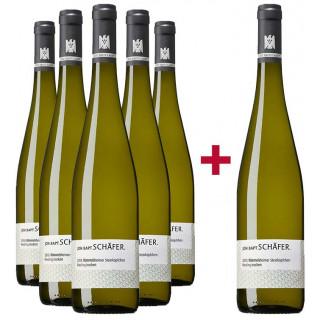 5+1 Rümmelsheimer Steinköpfchen Riesling VDP.Erste Lage Paket - Weingut Johann Baptist Schäfer