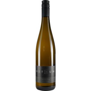 2018 RIESLING halbtrocken - Weingut Hothum