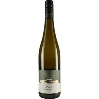 2018 Pinot trocken - Weingut Honold