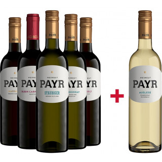 5+1 Robert Payr Entdecker-Paket - Weingut Payr