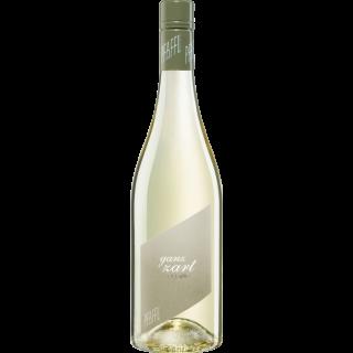 2020 Ganz Zart Grüner Veltliner Cuvee trocken - Weingut R&A Pfaffl