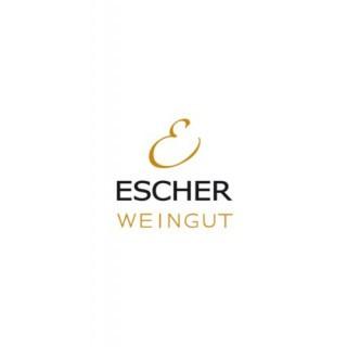 """2018 Lemberger """"Höchste Lage"""" trocken - Weingut Escher"""