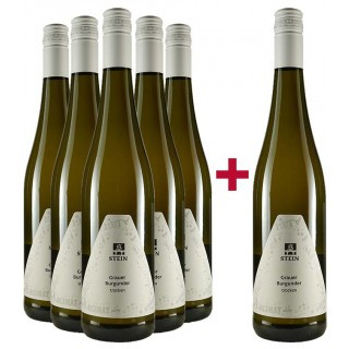 5+1 Paket Grauburgunder - Weingut Karl Stein