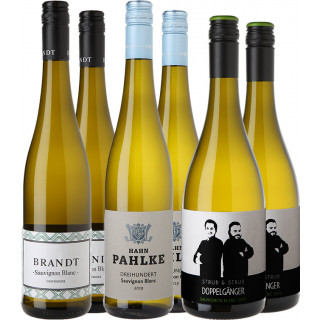Sauvignon Blanc Entdecker Paket