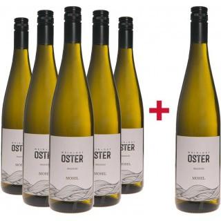 5+1 Paket Auxerrois - Weingut Oster