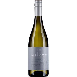 2020 Sauvignon Blanc Pleisweiler-Oberhofen trocken - Weingut Wilker
