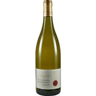 2018 Großlangheimer Kiliansberg Sauvignon Blanc BRODACKER trocken - Weingut Patrizierhof