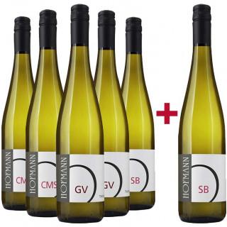 5+1 Trockene Weine Probierpaket - Weingut Rudolf Hofmann