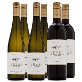 Matthias Beyer Kennenlern-Paket - Weingut Matthias Beyer