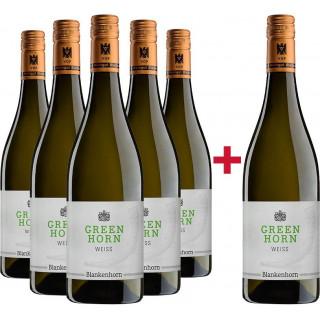 5+1 GREENHORN Weiß Paket - Weingut Blankenhorn
