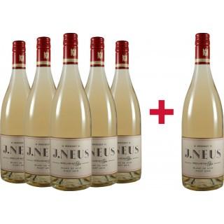 5+1 Pinot Noir Blanc de Noir VDP.Gutswein trocken Paket - Weingut J.Neus