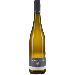 2019 Muskateller trocken - Weingut Schönlaub