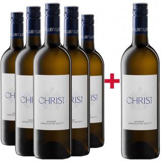 5+1 Paket Wiener Gemischter Satz DAC - Weingut Rainer Christ