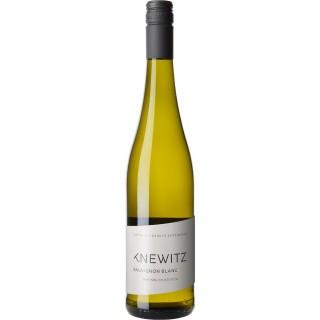 2020 Rheinblick Sauvignon Blanc Trocken - Weingut Knewitz