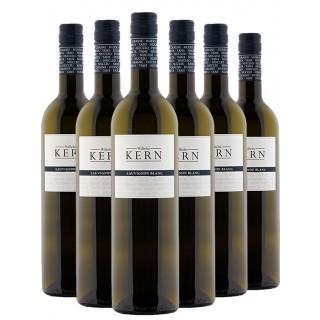 2019 BLAU Sauvignon Blanc Paket - Wilhelm Kern