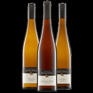 Riesling-Pyramide-Paket - Weingut Bischel
