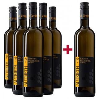 5+1 Paket Grüner Veltliner Classic - Weingut Autrieth