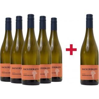 5+1 Hesslocher Weißburgunder trocken Paket - Weingut Dackermann