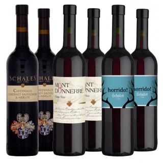 Rotwein Paket - Weingut Schales
