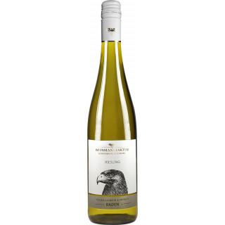 2019 Klingelberger Riesling Kabinett lieblich - Weinmanufaktur Gengenbach