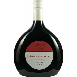 2016 Casteller Kirchberg Domina Spätlese Trocken - Weinbau Hofmann
