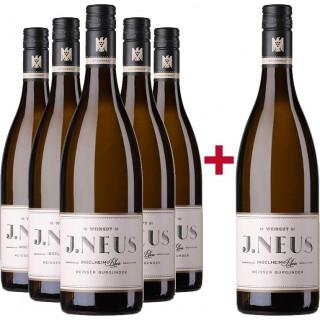 5+1 Weißburgunder VDP.Gutswein trocken Paket  - Weingut J. Neus