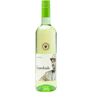 2019 Lausbub, Weißweincuvée - Baden - Weingut Hafner