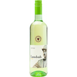 2019 Lausbub, Weißweincuvée trocken - Weingut Hafner