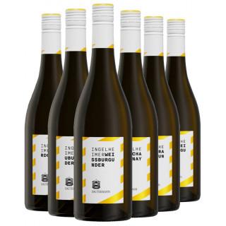 Probierpaket Weiß - Weingut Dautermann