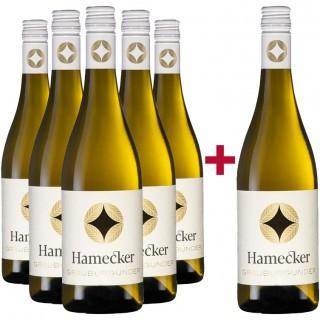 5+1 Paket Grauburgunder trocken - Mejs - die Weinspezialisten