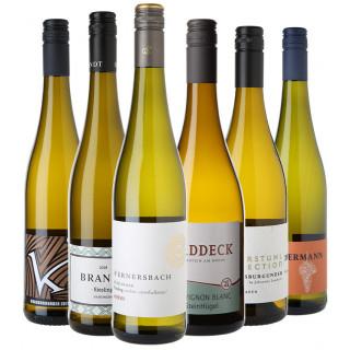 2018 Jungwinzer Weißwein Favoriten Paket
