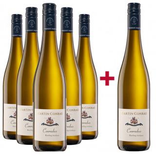 5+1 Paket CONRADUS Riesling trocken  - Weingut Martin Conrad