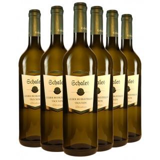Aromatisches Muskateller-Paket - Weingut Schales