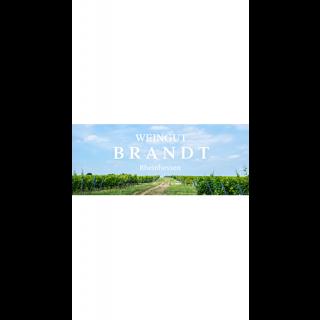 2016 Hesslocher Pinot Noir Rotwein trocken - Weingut Brandt