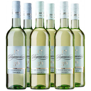 Entdecker Paket Burgunder Rebsorten - Weingut Paul Rogenwieser