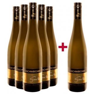 5+1 Paket GrooVee - Weingut Gschweicher