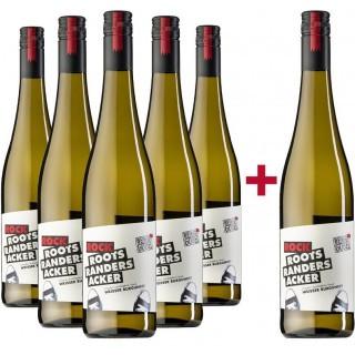 5+1 Paket Rock Weißer Burgunder trocken - Weingut Martin Göbel