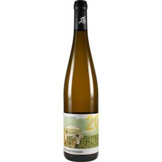 2015 Enkircher Zollturm Riesling trocken - Weingut C.A. Immich-Batterieberg
