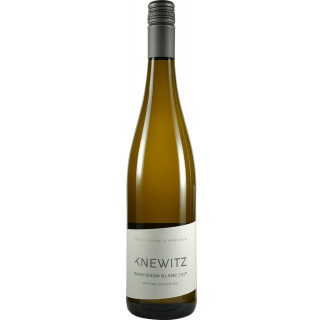 2018 Rheinblick Sauvignon Blanc Trocken - Weingut Knewitz