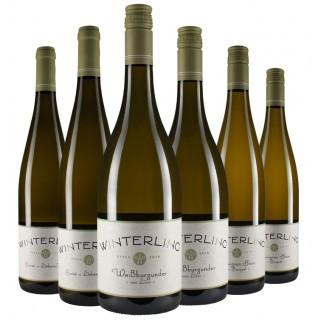 Himmlisches Weisswein-Paket
