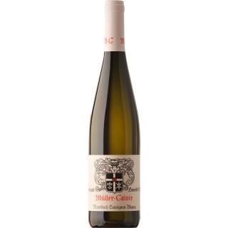 2018 Mussbach Sauvignon Blanc (BIO) | VDP.Ortswein trocken - Weingut Müller-Catoir